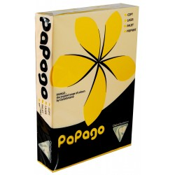 PaPago Sunflower Gold 80gsm Card A4 500 sheets from...